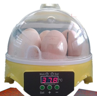 CE-Approved-Automatic-Egg-Incubator-Made-In